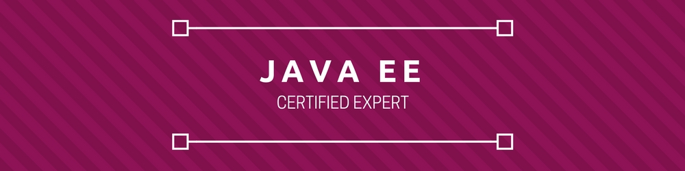 Java EE Certified Expert