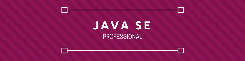 Java SE Professional Certification