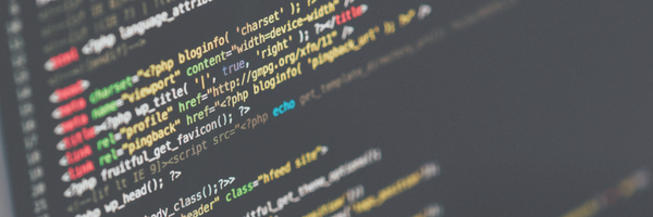 do software developers need a degree to be a successful coder?